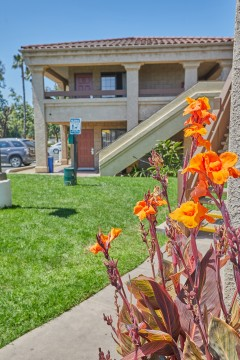 Welcome To Premier Inns Thousand Oaks - Pet Area